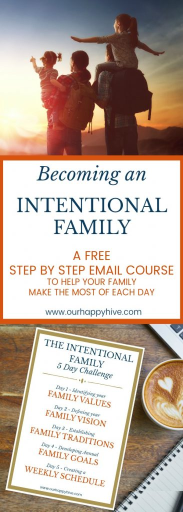 #family #vision #goals #values #traditions #familyvision #familygoals #familyvalues #familytraditions #intentional #intentionalfamily #intentionalliving