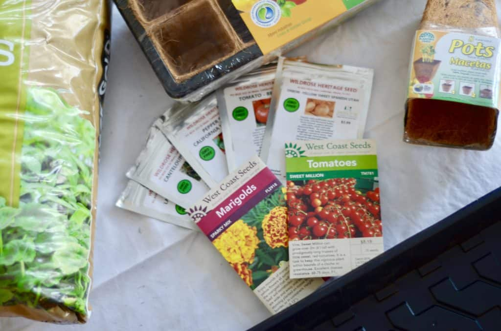 If you consider yourself a new gardener, a mom that wants to do something fun/educational with your kids, or a person that thinks starting from seeds is too hard, this post is for you! Learn about when to start seedlings indoors, the types of seeds to buy and plant. Check out this post for more great tips! | gardening, seedlings, family garden, square foot gardening, urban garden, starting seeds indoors, #plantingseedsindoors #seeds #vegetablegarden #squarefootgardening #ourhappyhive