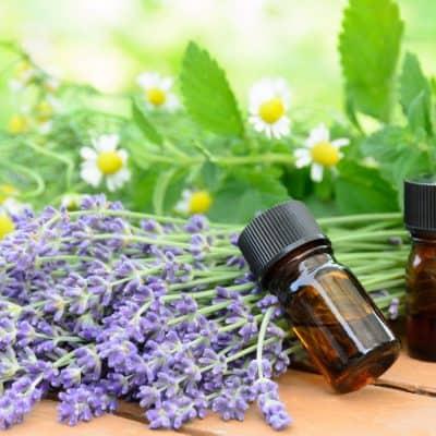 Essential Oils Basics – Tips for Beginners