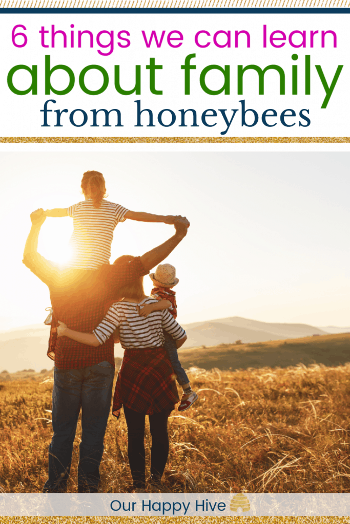 family looking into the sunset with text 6 things about family we can learn from honeybees